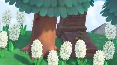 animal crossing new horizons grave