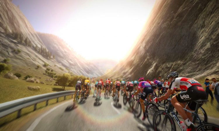 pro cycling manager 2020 preview